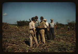 Sugar cane workers resting, Rio Piedras, Puerto Rico, 1941 Dec. Delano, Jack,, 1914-, photographer., The Library of Congress